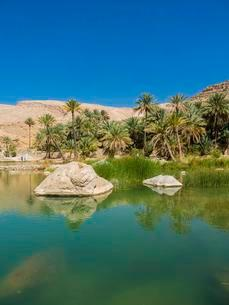 Wadi Bani Khalid, freshwater lake, Sharqiya Region, Muqalの写真素材 [FYI02341794]