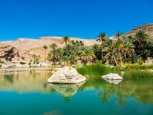 Wadi Bani Khalid, freshwater lake, Sharqiya Region, Muqalの写真素材 [FYI02341795]