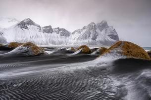 Black lava beach with fresh snow, Mount Vestrahornの写真素材 [FYI02341803]