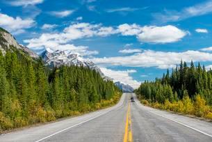 Highway Icefields Parkway, Highway 93, Canadian Rockiesの写真素材 [FYI02341863]