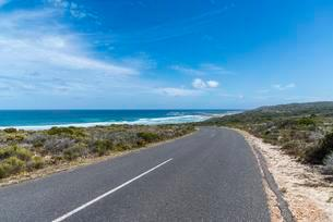 Highway to the Cape of Good Hope, Western Cape Provinceの写真素材 [FYI02341921]