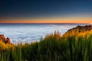 Sunrise with sea of mist, Pico de Arieiro, Funchal, Madeiraの写真素材 [FYI02342122]