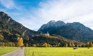 Neuschwanstein Castle in autumn, Schwangau, East Allgauの写真素材 [FYI02342228]