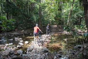 Two cyclists with e-mountain bikes in rainforest, Capeの写真素材 [FYI02342250]