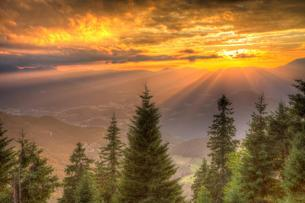 Alpine panorama in the sunset, in front coniferous forestの写真素材 [FYI02342254]
