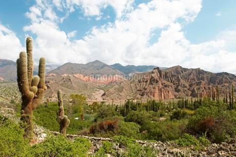Humahuaca Canyon, Quebrada de Humahuaca, Jujuy Provinceの写真素材 [FYI02342334]
