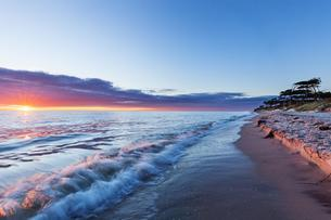 Sunset at the west beach Darss, Baltic Sea, National Parkの写真素材 [FYI02342347]