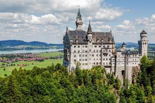 Neuschwanstein Castle, in the back Forggensee, Schwangauの写真素材 [FYI02342388]