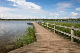 Bridge, natural open-air swimming pool, Feisneckseeの写真素材 [FYI02342391]