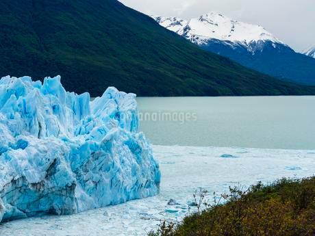 Perito Moreno glacier, region of El Calafate, Province ofの写真素材 [FYI02342431]
