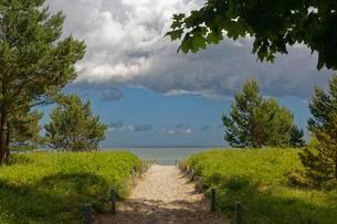 Beach access, Seebad Binz, Rugen, Mecklenburg-Westernの写真素材 [FYI02342437]