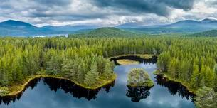 Overview of Loch Morlich, Glenmore Forest Park, Cairngormsの写真素材 [FYI02342463]