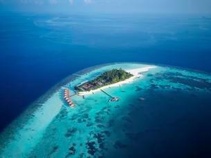 Mayaafushi Island Resort, offshore coral reef, Ari Atollの写真素材 [FYI02342501]