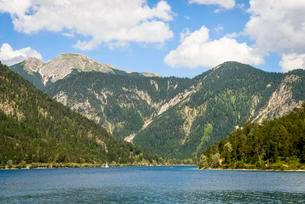 Lake Plansee, view from the shore, mountain landscapeの写真素材 [FYI02342519]