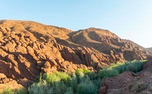 Red rock formations in the Dades Valley, Morocco, Africaの写真素材 [FYI02342529]