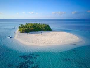 Uninhabited island for day trips with palm trees, bushesの写真素材 [FYI02342531]