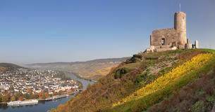 Landshut castle ruin above the Moselle, Bernkastel-Kuesの写真素材 [FYI02342545]