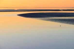 Sunset over the Wadden Sea, North Sea, Lower Saxonyの写真素材 [FYI02342574]