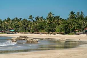 Sandy beach with palm trees, Ngwe Saung, Myanmar, Asiaの写真素材 [FYI02342594]