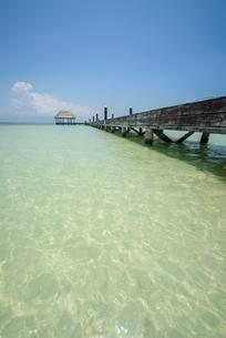 Dock in a beach of Isla Holbox, Quintana Roo, Mexicoの写真素材 [FYI02342599]