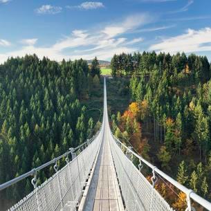 Hanging rope bridge Geierlay, Morsdorfer Bachtalの写真素材 [FYI02342643]