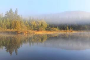 Morning fog, water reflection in the lake, Lac Lajoie, Montの写真素材 [FYI02342649]