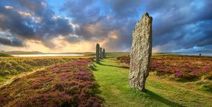 The standing stones of the Ring of Brodgar, neolithic hengeの写真素材 [FYI02342650]