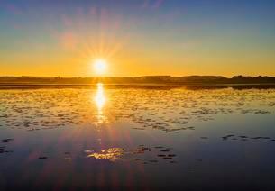 Sunrise at Federsee lake moor near Bad Buchau, Upperの写真素材 [FYI02342674]