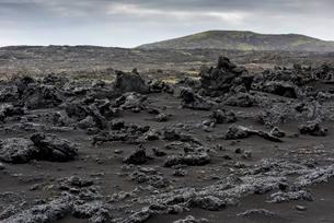 Black sand, lava, Reykjanesskagi, Southern Peninsula orの写真素材 [FYI02342687]