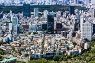 View of Tokyo, Honshu Island, Japan, Asiaの写真素材 [FYI02342756]