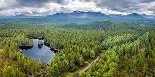 Overview of Loch Morlich, Glenmore Forest Park, Cairngormsの写真素材 [FYI02342757]