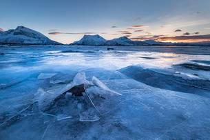 Frozen fjord with broken ice, ice landscape, Gimsoyの写真素材 [FYI02342797]