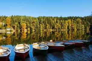 Rowing boats, Hollensteinsee, near Viechtach, Bavarianの写真素材 [FYI02342814]