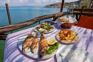 Speciality, fried Ohrid trout (Salmo letnica) served withの写真素材 [FYI02342841]