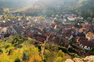 View from the castle tower to Kaysersberg, Alsatian Wineの写真素材 [FYI02342854]