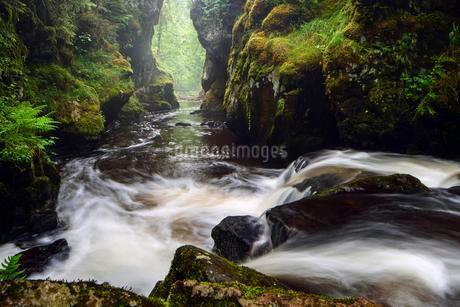 Haslach Gorge, Haslach, Rechenfelsen, Black Forestの写真素材 [FYI02342878]