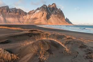 Evening atmosphere, Black sand beach, dunes with dry grassの写真素材 [FYI02342910]