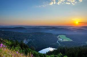 View from Feldberg mountain to lake Feldsee, sunrise, Blackの写真素材 [FYI02342966]