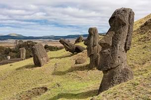 Moais in Rano Raraku, Rapa Nui National Park, Easterの写真素材 [FYI02342973]