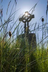 Celtic cross in the high grass, also wheel cross in aの写真素材 [FYI02342975]