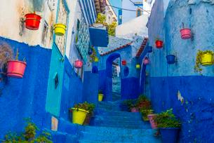 Narrow alley with colorful flowerpots, blue houses, Medinaの写真素材 [FYI02342993]