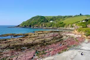Talland Bay near Polperro, Cornwall, England, Unitedの写真素材 [FYI02343009]