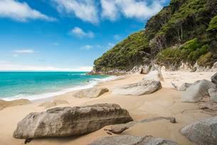 Rocks on sandy beach with tropical vegetation, Tongaの写真素材 [FYI02343015]