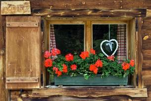 Geraniums and braided heart on the window of a farmhouseの写真素材 [FYI02343019]