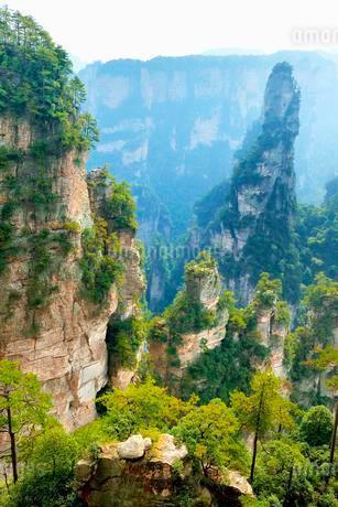 Avatar Mountains with vertical quartz-sandstone pillarsの写真素材 [FYI02343075]
