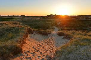 Deep sun illuminates the dune landscape, Amrumの写真素材 [FYI02343125]