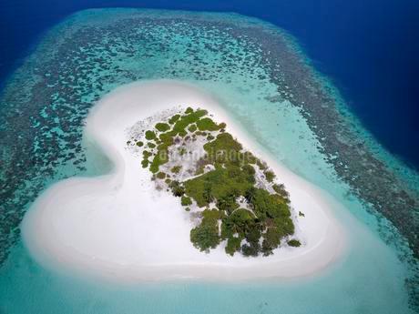Heart-shaped, uninhabited palm island with sandy beachの写真素材 [FYI02343210]
