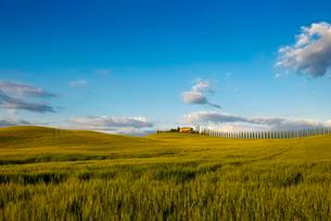 Tuscany landscape with cypresses and farmstead, sunset, Sanの写真素材 [FYI02343341]