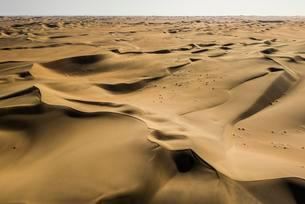 Sand dunes in the Namib desert, Erongo region, Namibiaの写真素材 [FYI02343342]