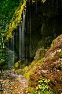 Schleierfall, waterfall in the Wutach Gorge, Black Forestの写真素材 [FYI02343448]
